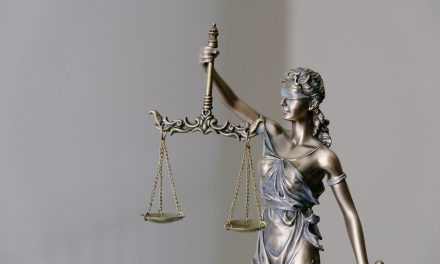 COVID-19, The Courts and Access to Justice Issue 9
